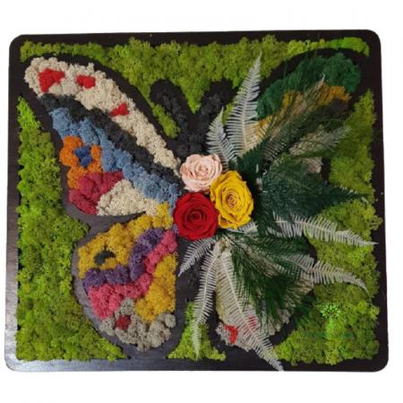 Tablou Fluture [0]