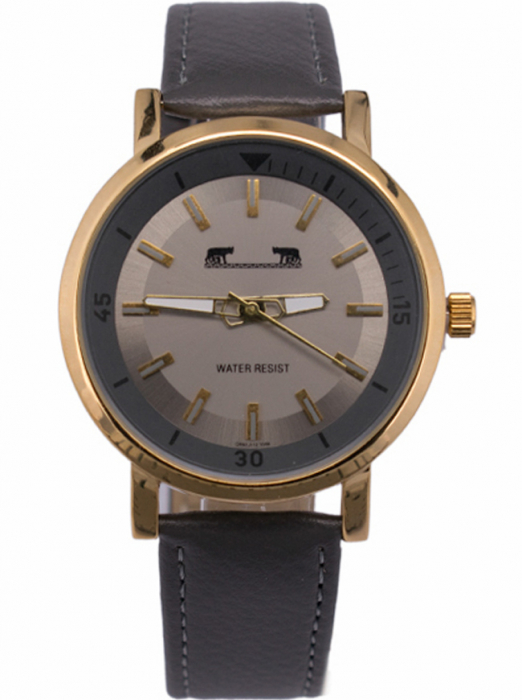 Ceas Barbatesc Matteo Ferari Gray/Gold Casual II [0]