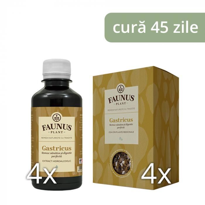 Pachet Stomac Sanatos - Afectiuni Gastro-Intestinale 0