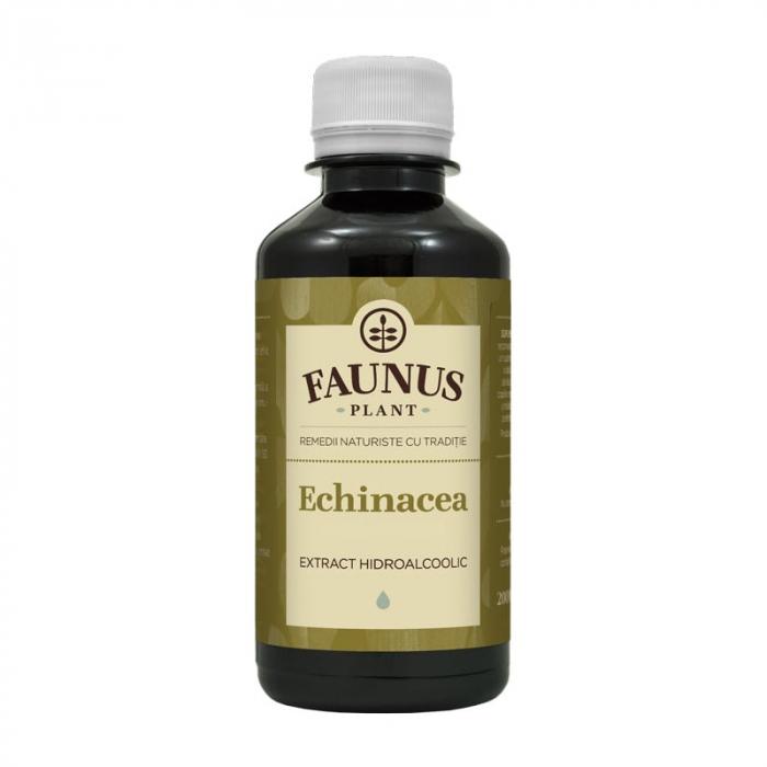Tinctura Echinacea 200ml 0