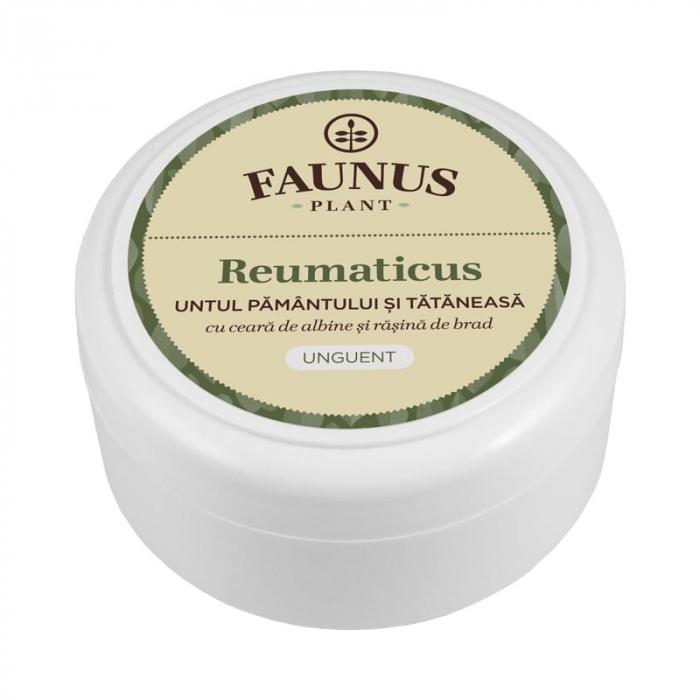 Unguent Reumaticus (Untul Pamantului si Tataneasa) 100ml 0