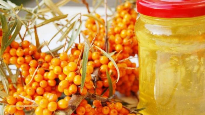 Miere cu fructe de padure 0