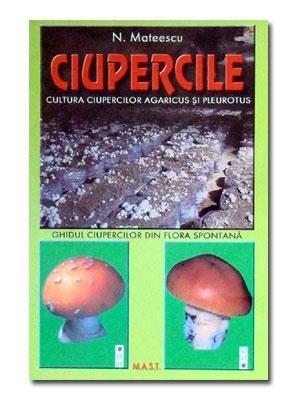 Ciupercile- Cultura ciupercilor agaricus si pleurotus 0