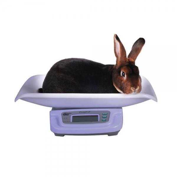 Cântar special pentru iepuri capacitate maximă 20kg 0