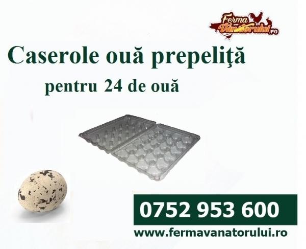 Caserole ouă prepeliţe 24BUC 0