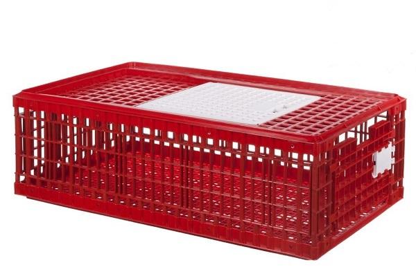 Cușcă de plastic pentru transport păsări model M 0