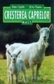 Creșterea caprelor 0