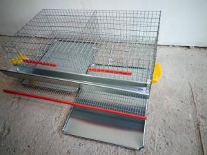 Cuscă prepelițe ouătoare capacitate 50 de capete cu adăpători automate0