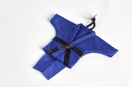 Mini Kimono Judo albastru Ippon Gear [0]