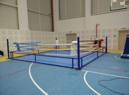 Ring de Box Fara Platforma 4x4 metri Armura