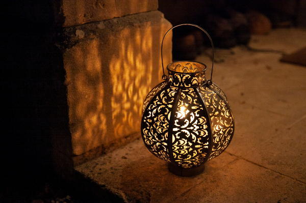 Felinar Morocco 4