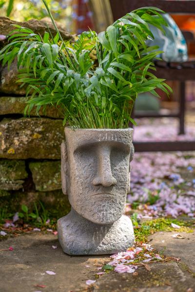 Ghiveci Moai Mediu 3