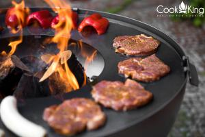 Vatră de foc, plită și grill Santos5