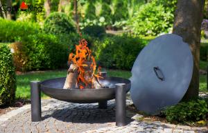 Vatră de foc Parma4