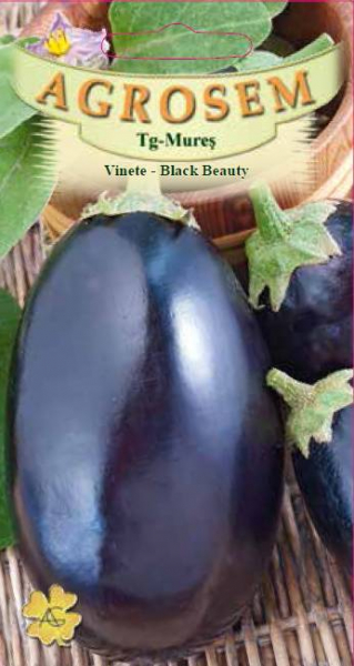 Vinete - Black Beauty 0