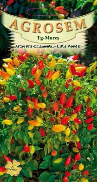Ardei Iute Ornamental - Little Wonder
