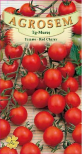 Tomate - Red Cherry0