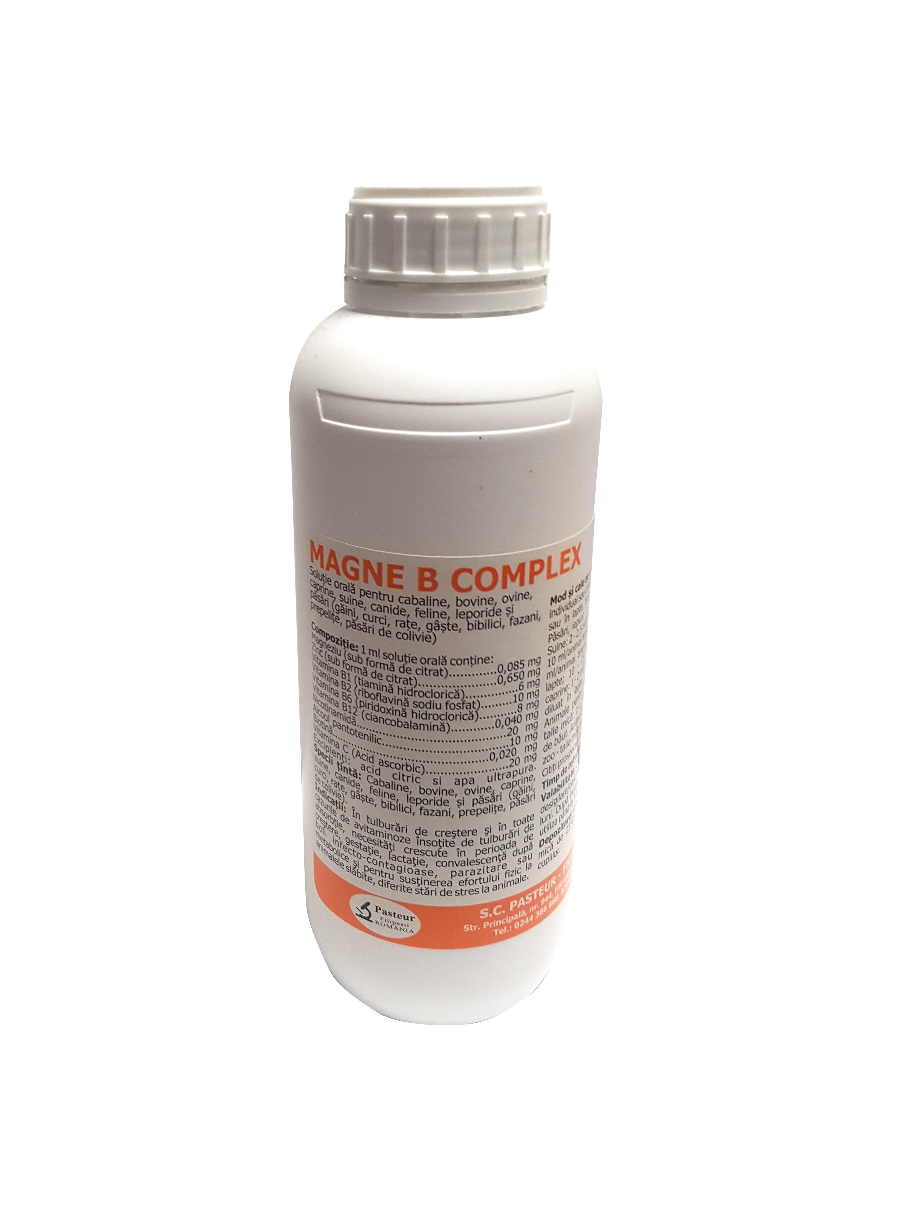 Complex de vitamina B pentru animale, Magne B Complex, Pasteur, 1L 1