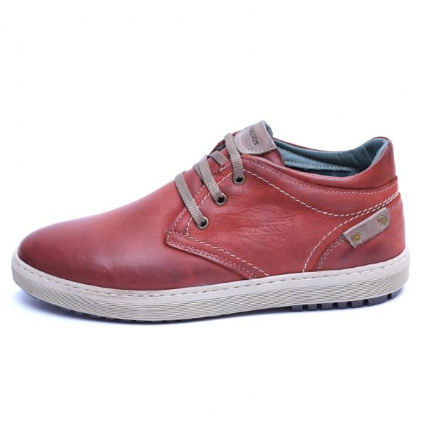 Pantofi barbati din piele naturala, Jim, Gitanos, Visiniu, 39 EU 3