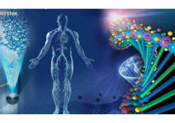 Aparat de biostimulare prin biorezonanta, Bio Harmonex 4, CaliVita 2