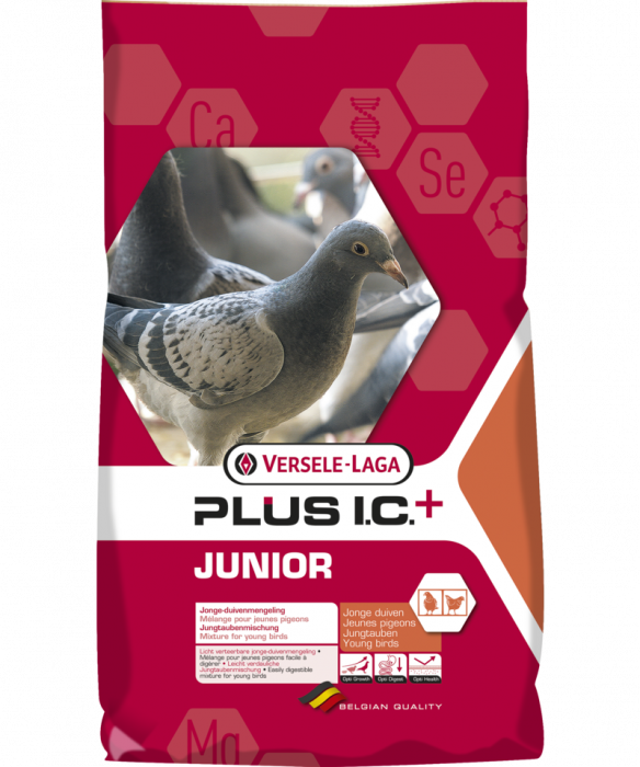 Hrana pentru porumbei, Junior Plus IC, Versele-Laga, 20 kg [0]
