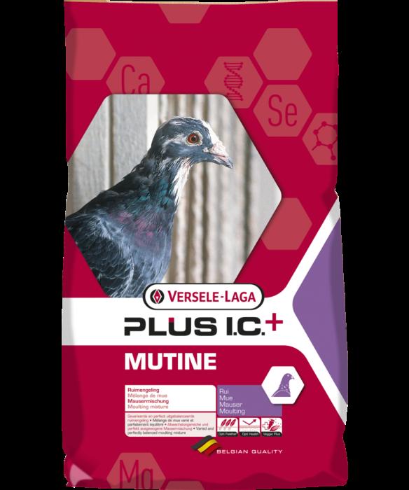 Hrana pentru porumbei, Mutine Plus IC, Versele-Laga, 20 kg 0