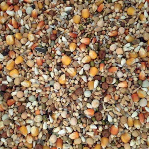 Hrana pentru porumbei, Racing Exclusive, Vanrobayes, 20 KG 1