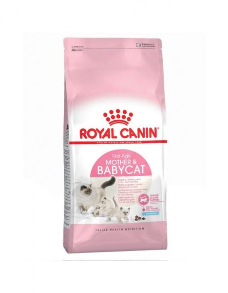 Hrana uscata pentru pisici, Royal Pet Mother&Babycat, 4 Kg 0
