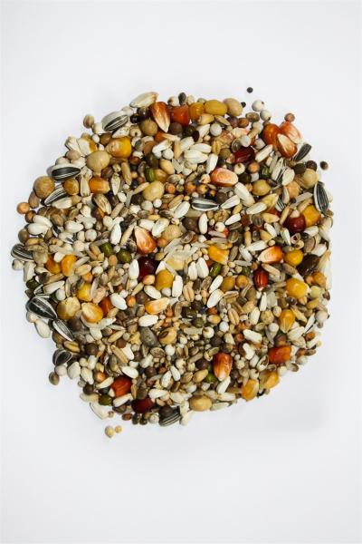 Hrana uscata pentru porumbei Vanrobayes,  Dynamik Premium Power, 20kg 0