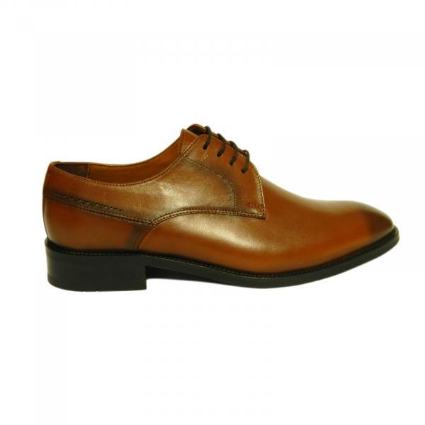 Pantofi eleganti pentru barbati Eddie, piele naturala, Gitanos, Maro, 39 EU [0]