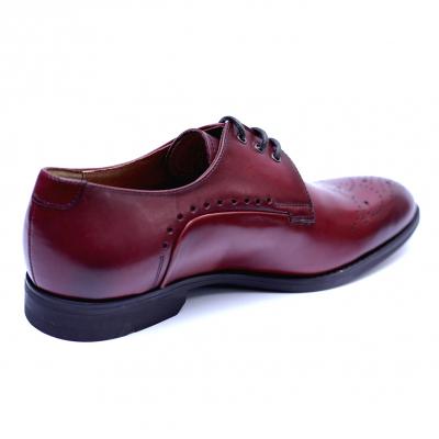 Pantofi eleganti pentru barbati din piele naturala, Soni, ANNA CORI, Bordeaux, 40 EU [3]