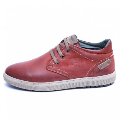 Pantofi barbati din piele naturala, Jim, Gitanos, Visiniu, 39 EU3