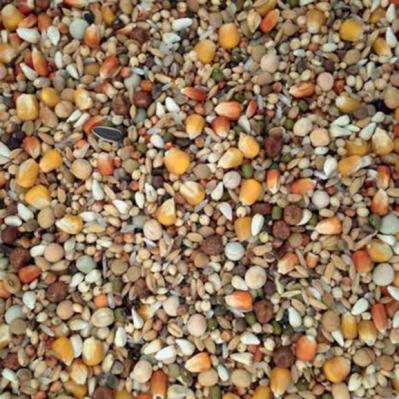 Hrana pentru porumbei, Racing Exclusive, Vanrobayes, 20 KG1