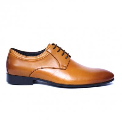 Pantofi barbati din piele naturala, Scottie, SACCIO, Maro, 39 EU3