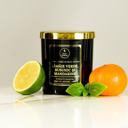 lumanare parfumata lamaie verde busuioc si mandarine [0]
