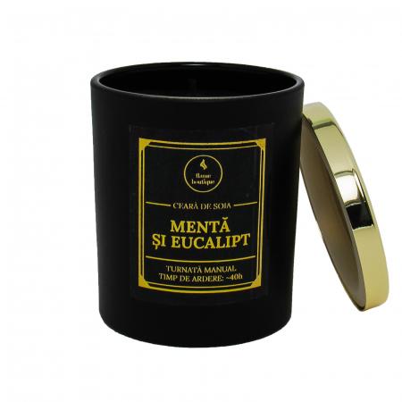 Lumânare parfumată din ceară de soia Mentă și eucalipt | Premium Negru1