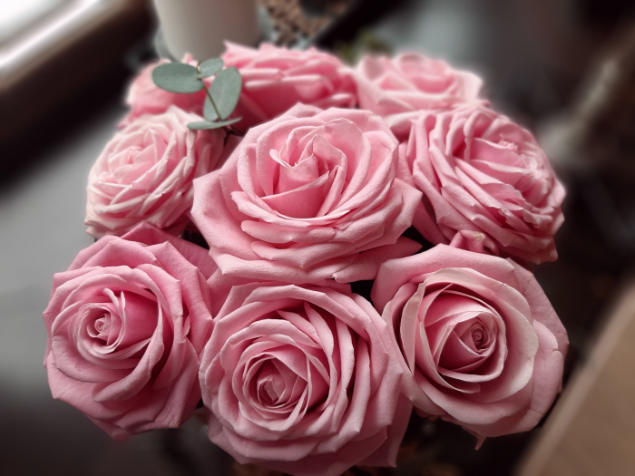 9 Pink Roses in box 3
