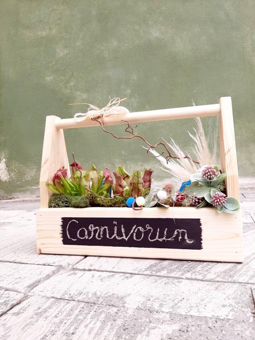 Carnivorum! 1