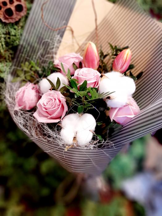 Pink & Cotton 3