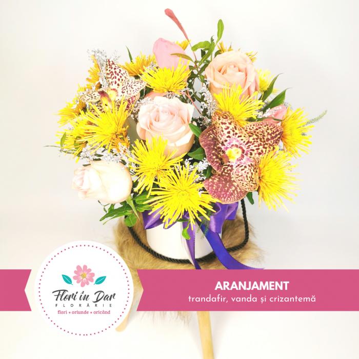 Aranjament cu trandafir, vanda și crizantema [0]