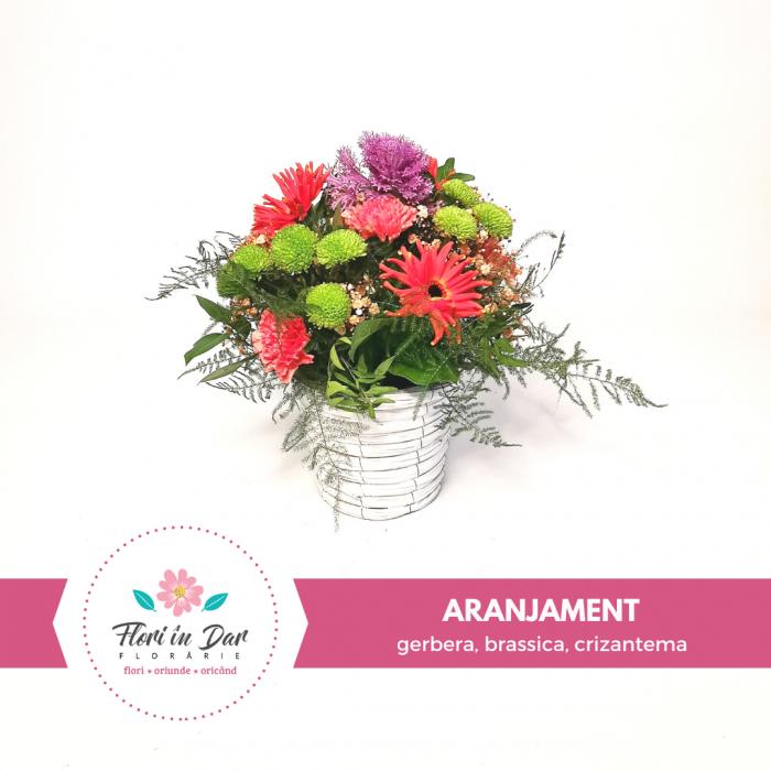 Aranjament floral cu gerbera, brassica, crizantema, florarie Roman [0]