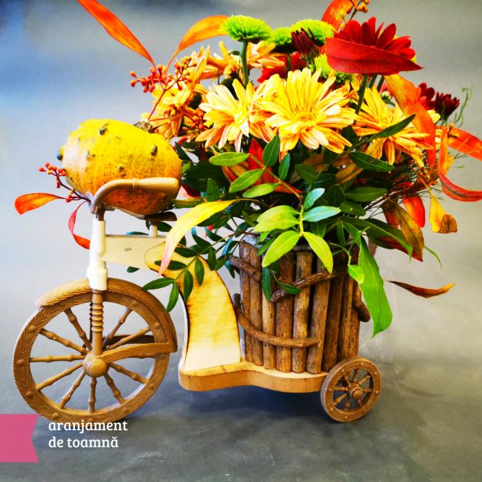 Aranjmanete florale toamna cu livrare gratuita in Roman [1]