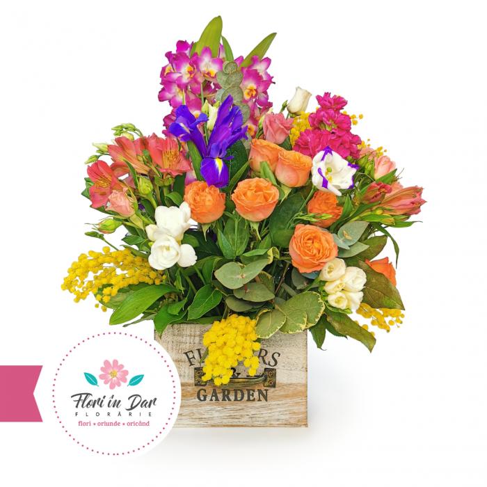 Aranjament cu dendrobium, mimosa, miniroze, Iris, alstroemeria, frezie florarie Roman [0]