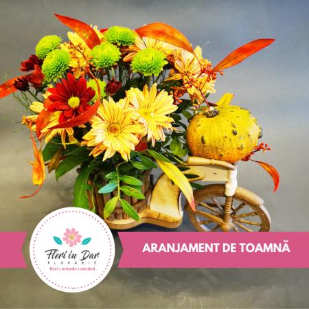 Aranjmanete florale toamna cu livrare gratuita in Roman [0]