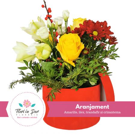 Aranjament floral cu amarilis, ilex, trandafir și crizantema cu livrare Roman [0]