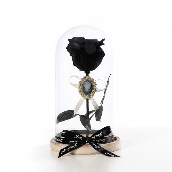 Trandafir Criogenat Negru [2]