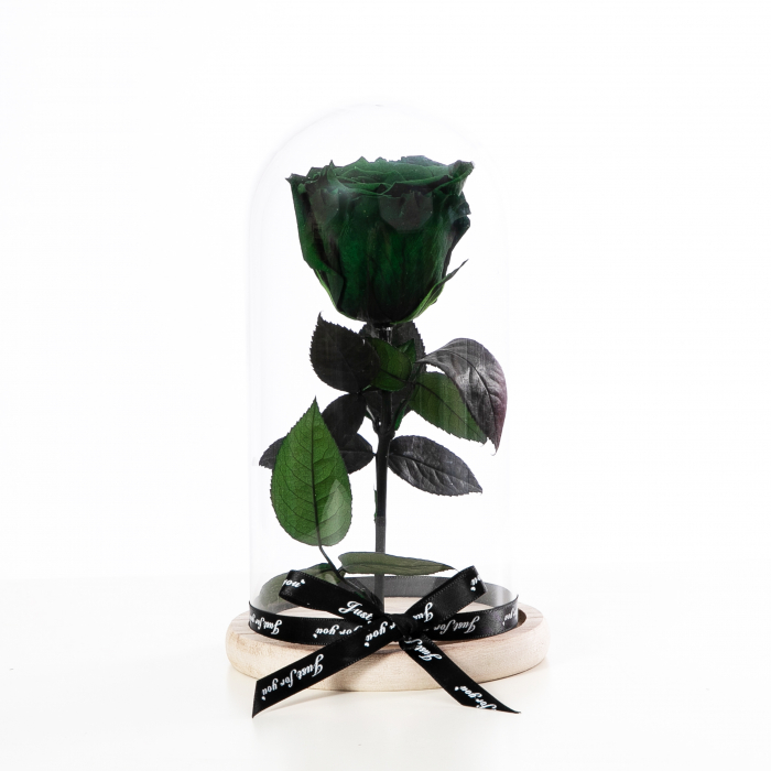 Trandafir Criogenat Verde [1]