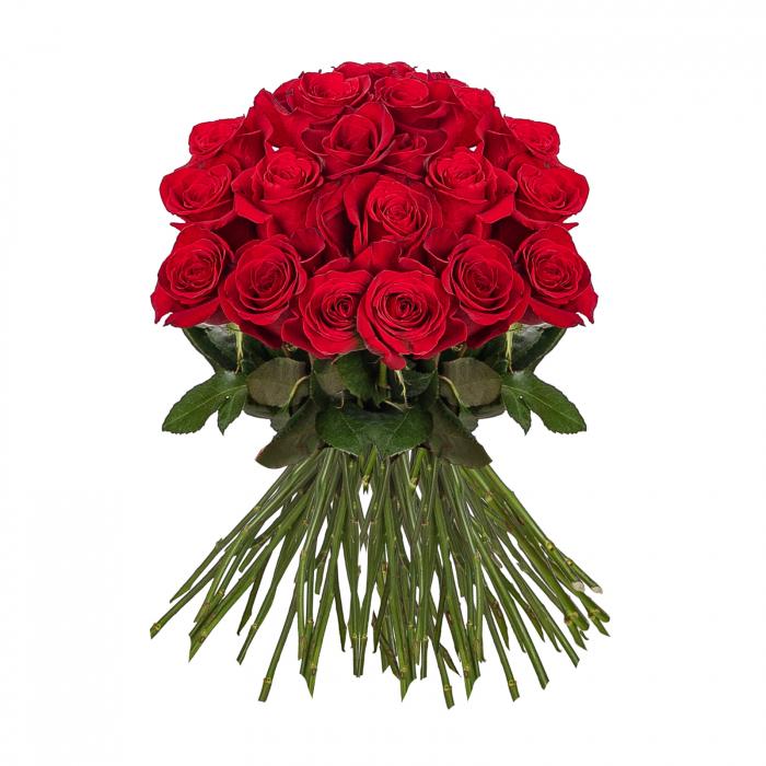 35 Trandafiri Rosii [0]