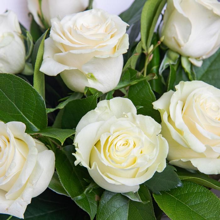 Buchet de flori cu 7 trandafiri albi [1]