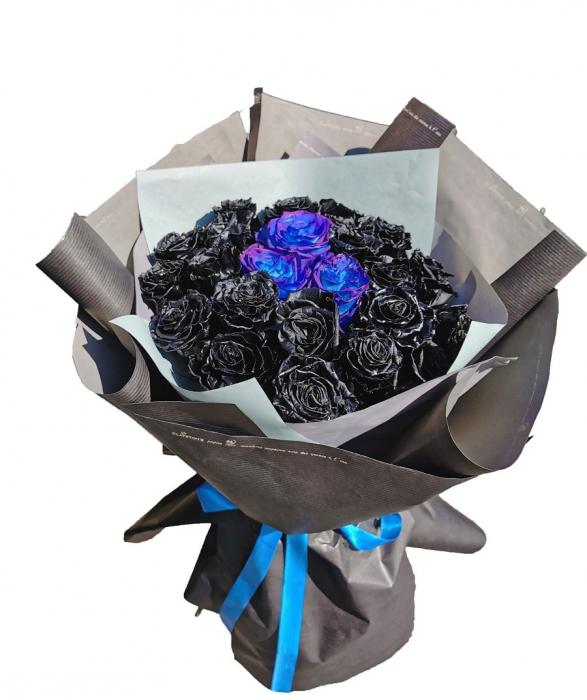Trandafiri negri [0]
